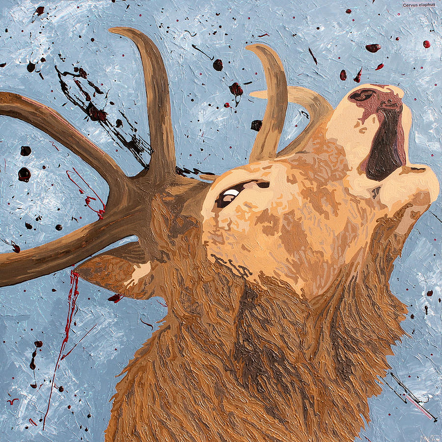 Cervus Elaphus Mixed Media - Red Deer Stag  by Claire  Milner