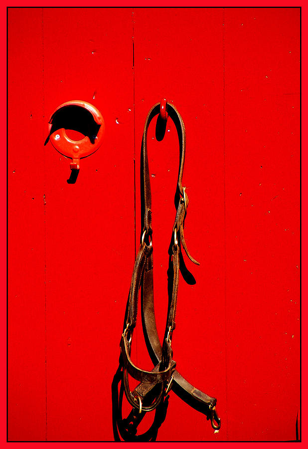 Horse Bridle Photograph - Red Door With Horse Bridle by Margie Avellino