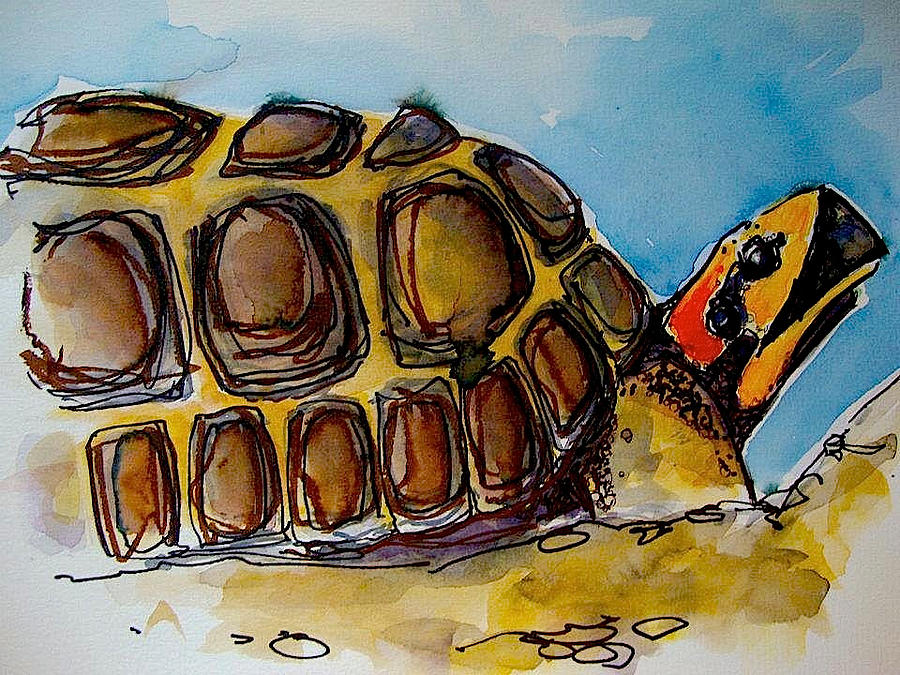 Scientific Study Mixed Media - Red Foot Tortoise by Richard Greene