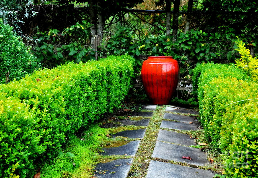 Garden Photograph   Red Garden Urn By Tanya Searcy