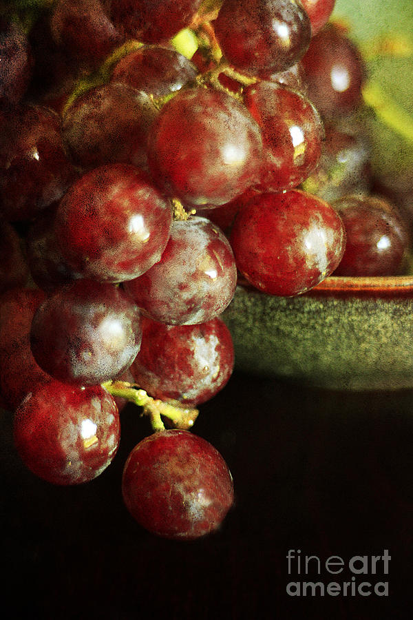 Agriculture Photograph - Red Grapes by Darren Fisher