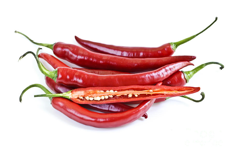 Pepper Photograph - Red Hot Chili Peppers by Elena Elisseeva