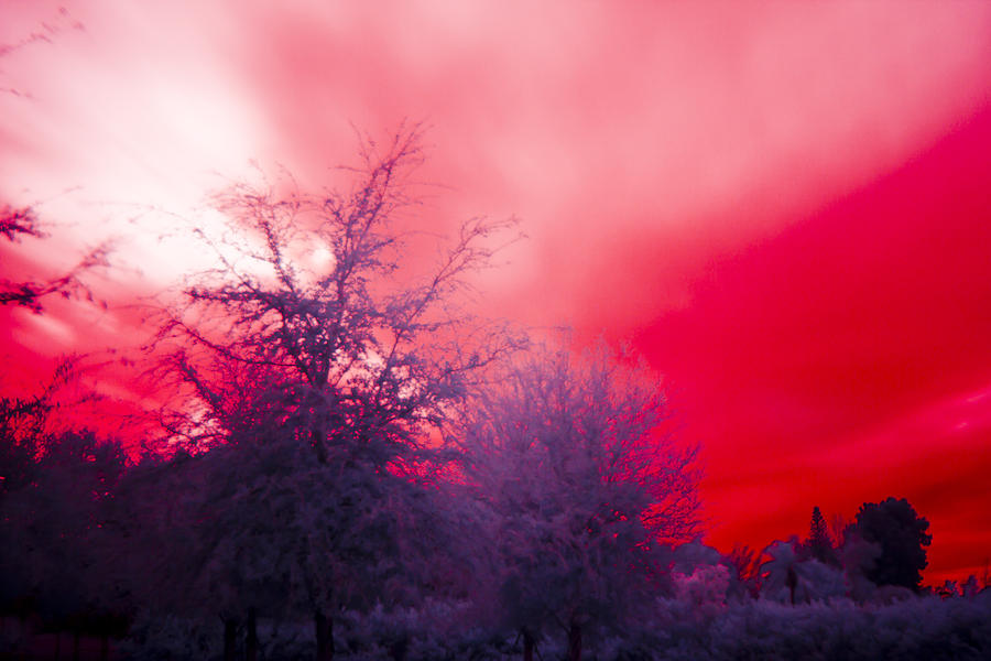 Sky Photograph - Red by Nicholas Evans