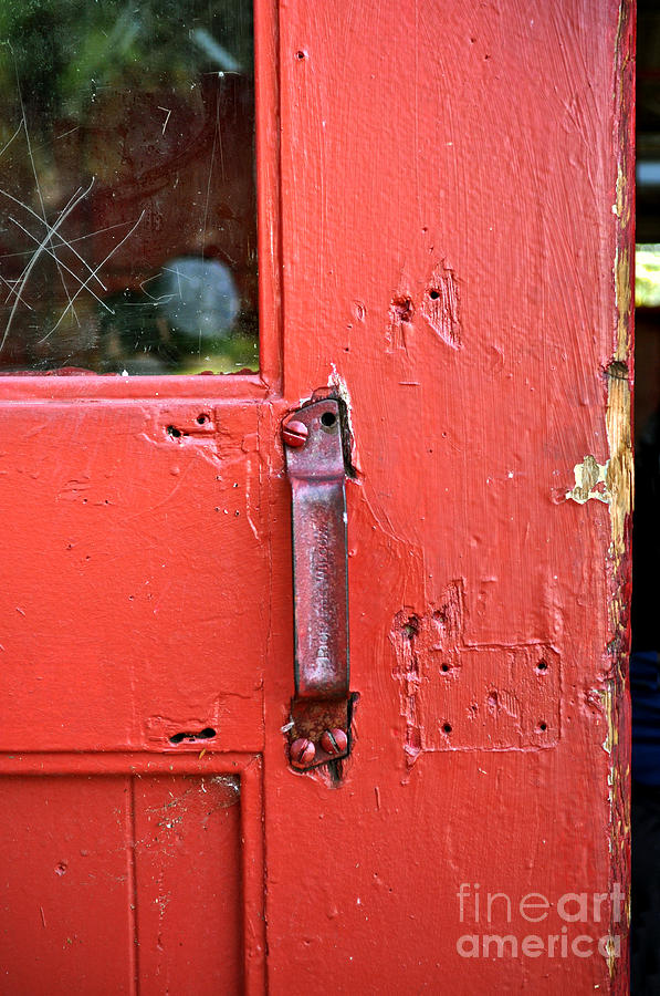 Red Photograph - Red Of Course by Gwyn Newcombe