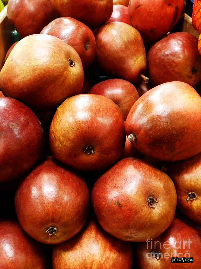 Red Pears Photograph - Red Pears by Methune Hively
