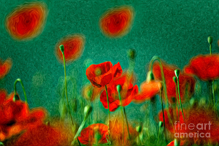 Red Poppy Flowers 07 Painting