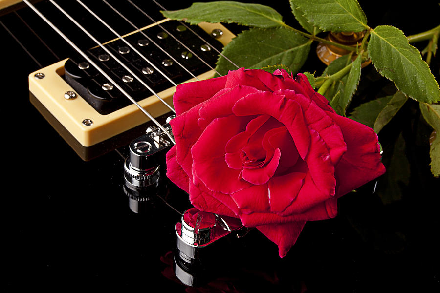 Red Rose Black Electric Guitar Photograph By M K Miller