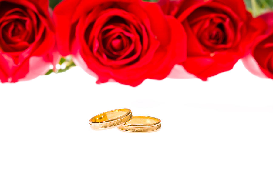 Red Roses And Wedding Rings Over White Photograph By U Schade