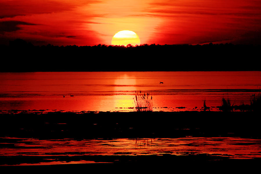 Sunset Photograph - Red Sky Reflected by DK Hawk