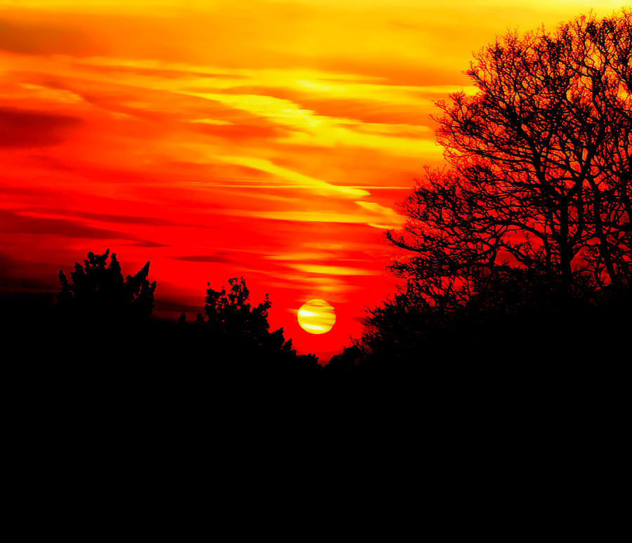 Sunset Photograph - Red Sunset by Jasna Buncic