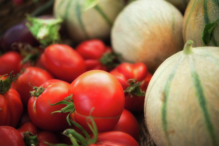 Horizontal Photograph - Red Tomatoes And Cantaloupe Melons by Alexandre Fundone