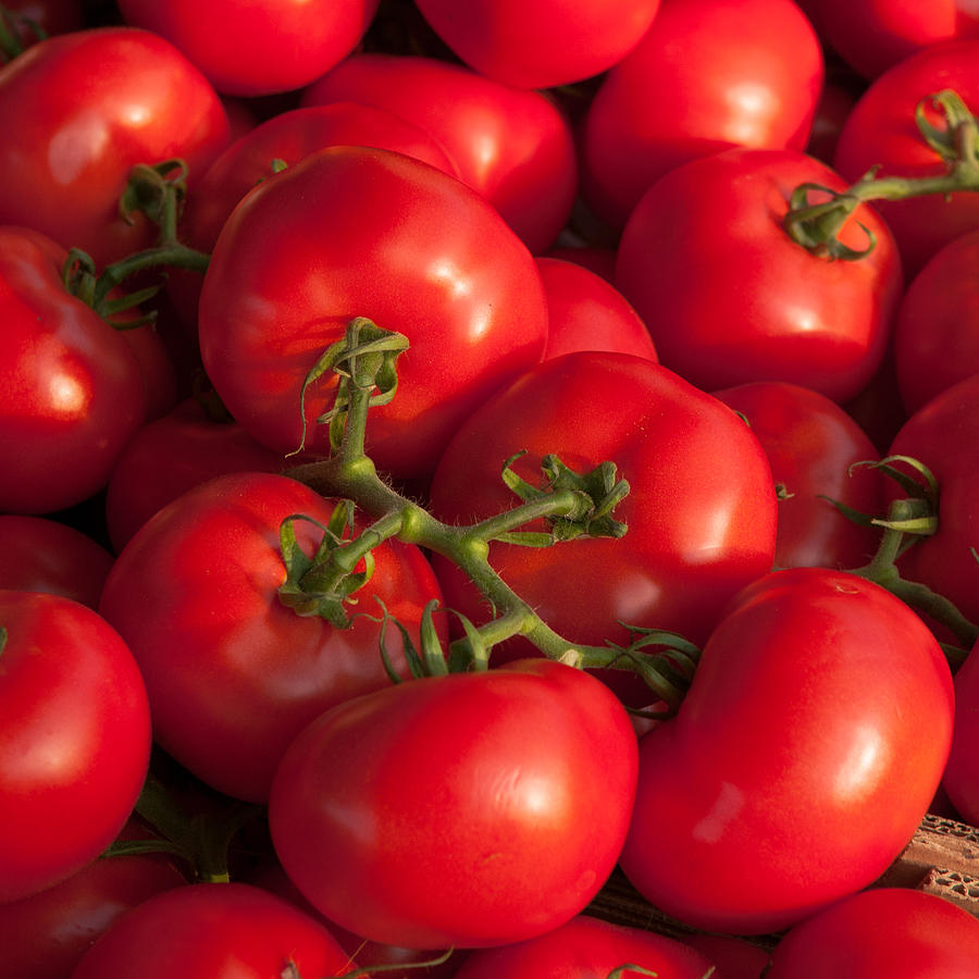 Red tomatoes by Philippe Taka