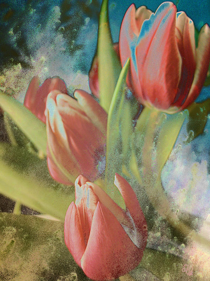 Red Tulips Photograph - Red Tulips Blue Water by Barbara Middleton