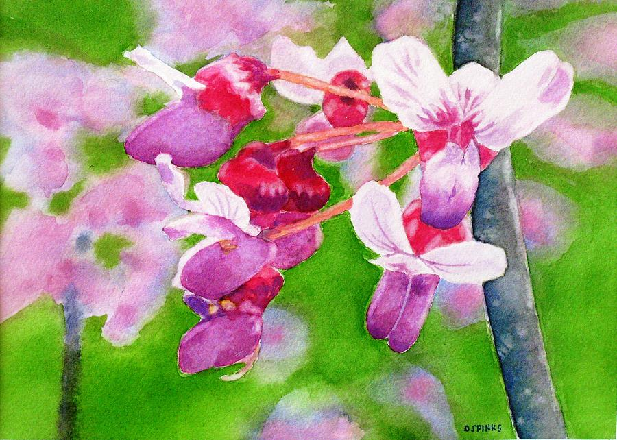 Redbud Painting - Redbud by Debra Spinks