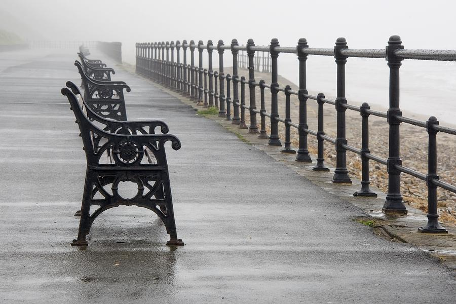 Bench Photograph - Redcar, North Yorkshire, England Row Of by John Short