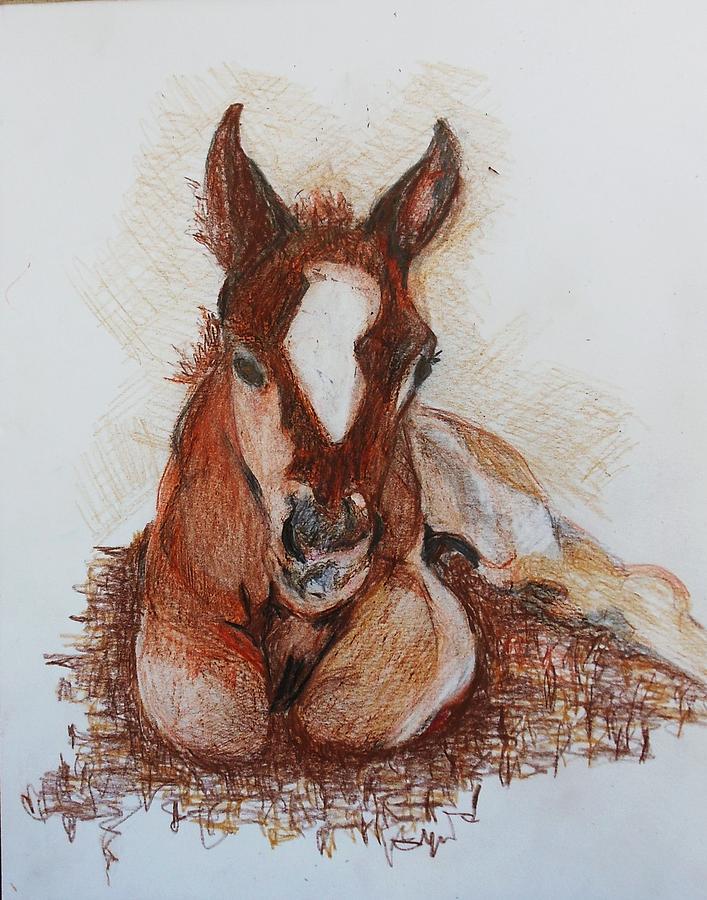 Horses Pastel - Reef by Deborah Gorga