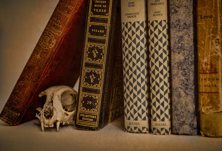 Bone Photograph - Reference by Heather Applegate