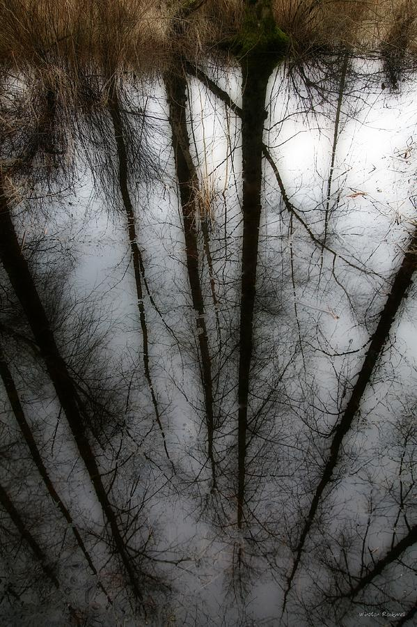 Reflection Photograph - Reflecting On A Winter Day by Winston Rockwell