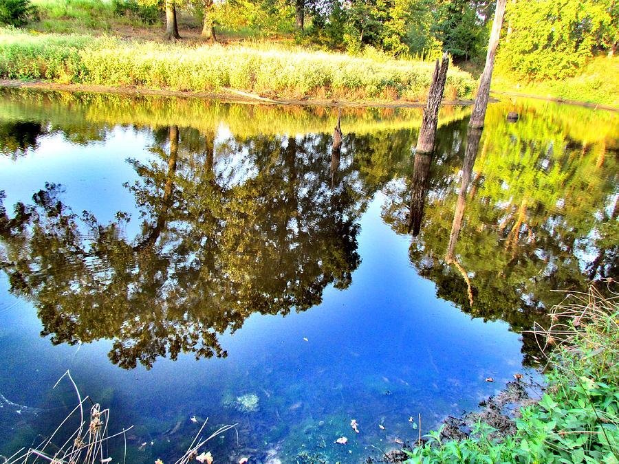 Reflection Photograph - Reflection by Evgeniya Sohn Bearden