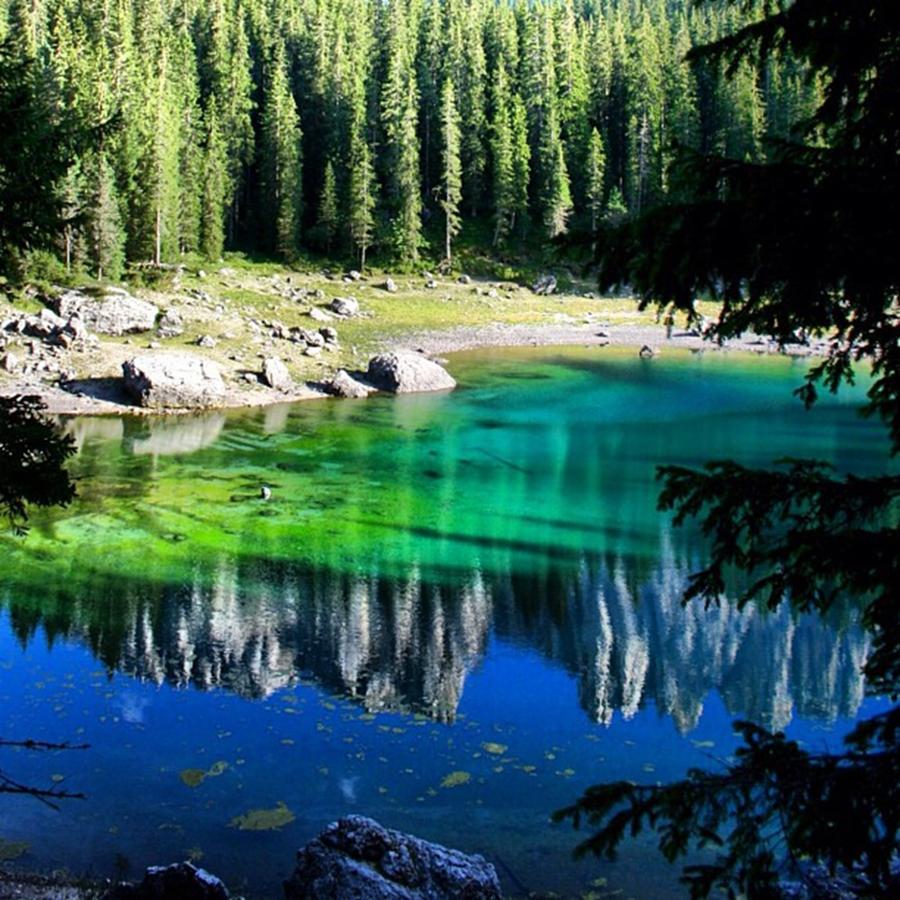 Lake Photograph - Reflection by Luisa Azzolini