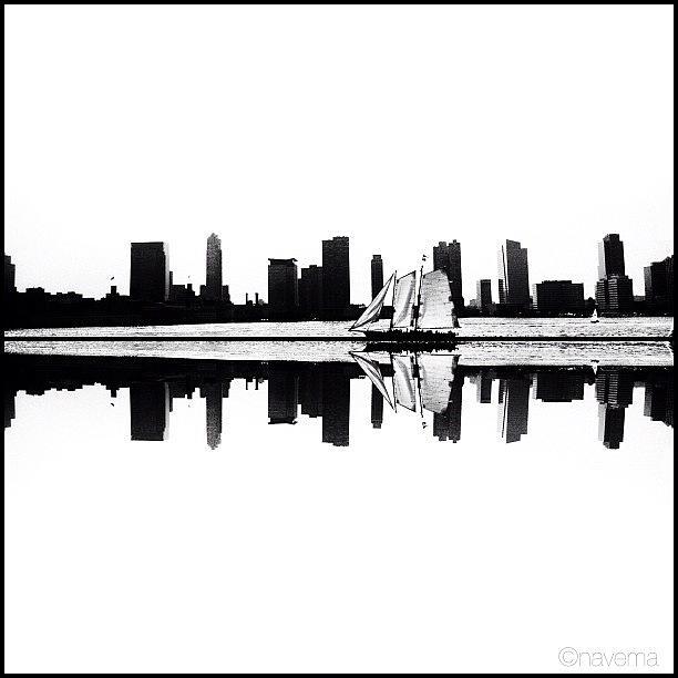 Blackandwhite Photograph - Reflection by Natasha Marco