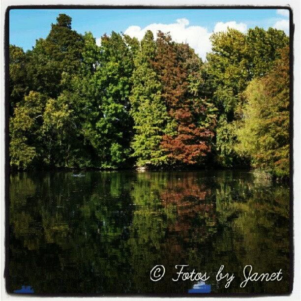 Beautiful Photograph - Reflection #tagstagram .com #river by Janet Ortiz