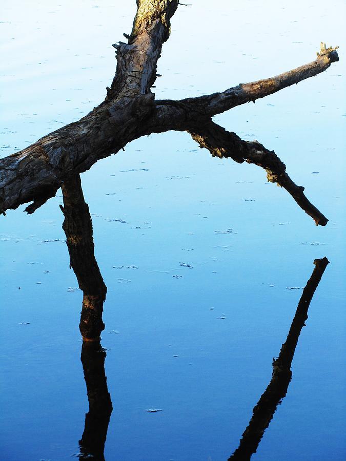 Water Reflection Photograph - Reflections #1 by Todd Sherlock
