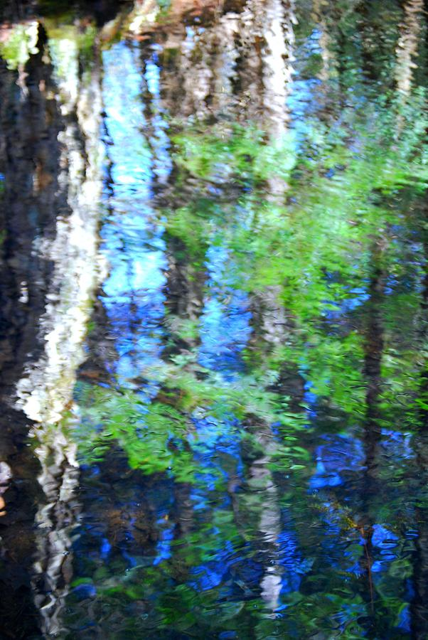 Reflections Photograph by Dawn Forcier
