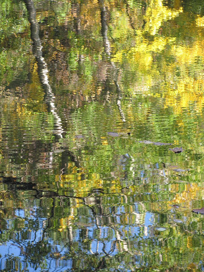 Water Photograph - Reflections In Paradise 1 by Anita Burgermeister
