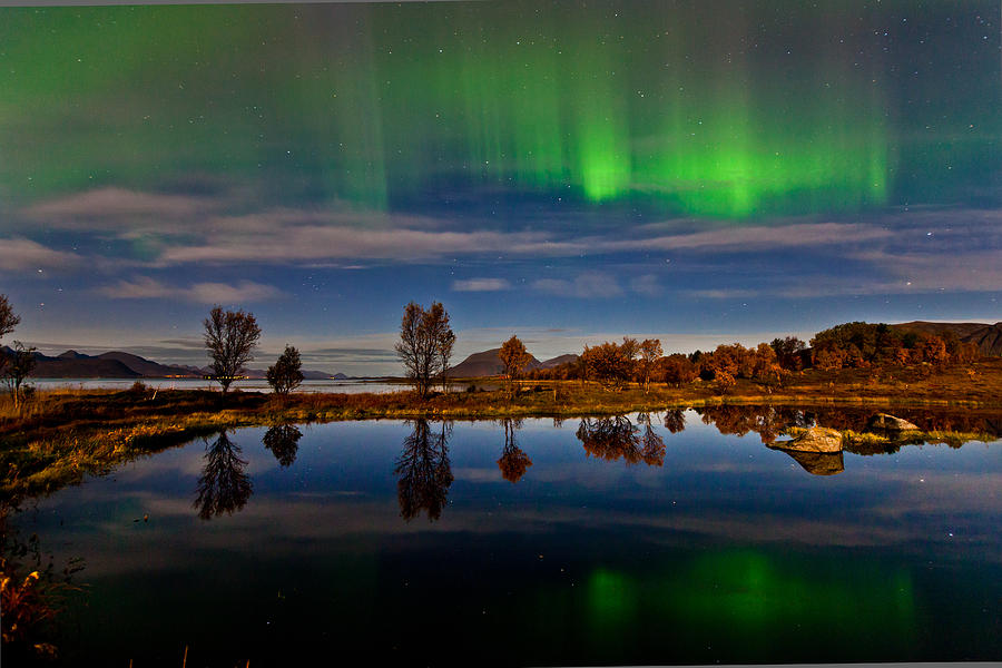 Aurora Borealis Photograph - Reflections In The Pond by Frank Olsen