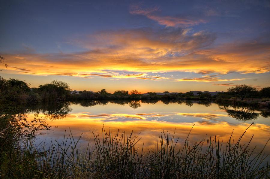 Sunset Photograph - Reflections Of Gold  by Saija  Lehtonen