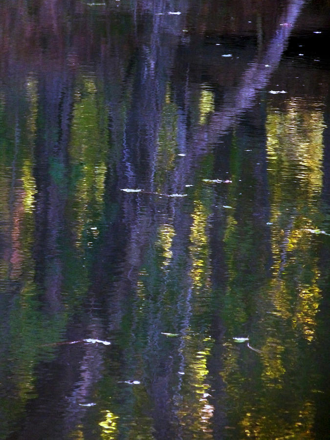 Creek Photograph - Reflections Of Monet by Terry Eve Tanner