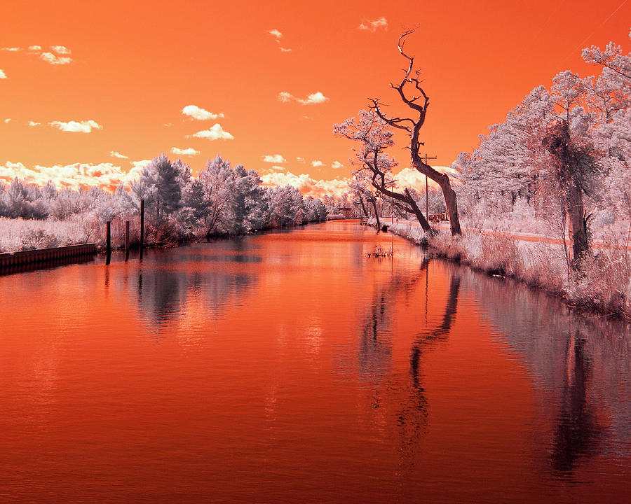 Infra Red Photograph - Reflections On Canal In Infra Red by Jackie Briggs