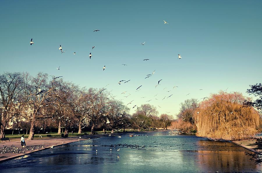 Horizontal Photograph - Regents Park by DarkRigel