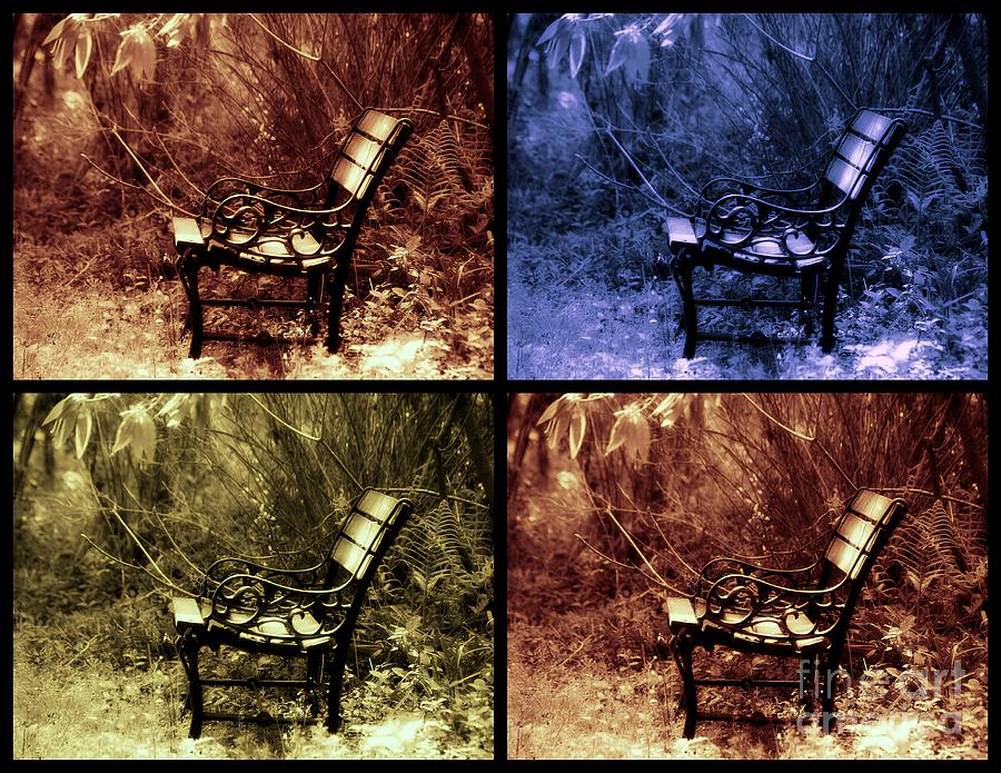 Bench Photograph - Relaxing Time by Susanne Van Hulst