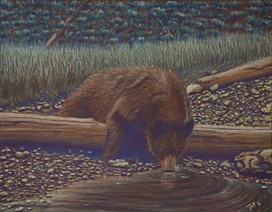Bear Pastel - Relaxing With A Drink by Thomas Maynard