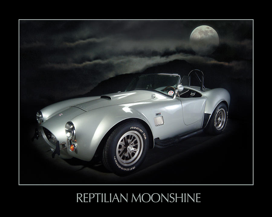 Shelby Cobra Photograph - Reptilian Moonshine by Robert Twine