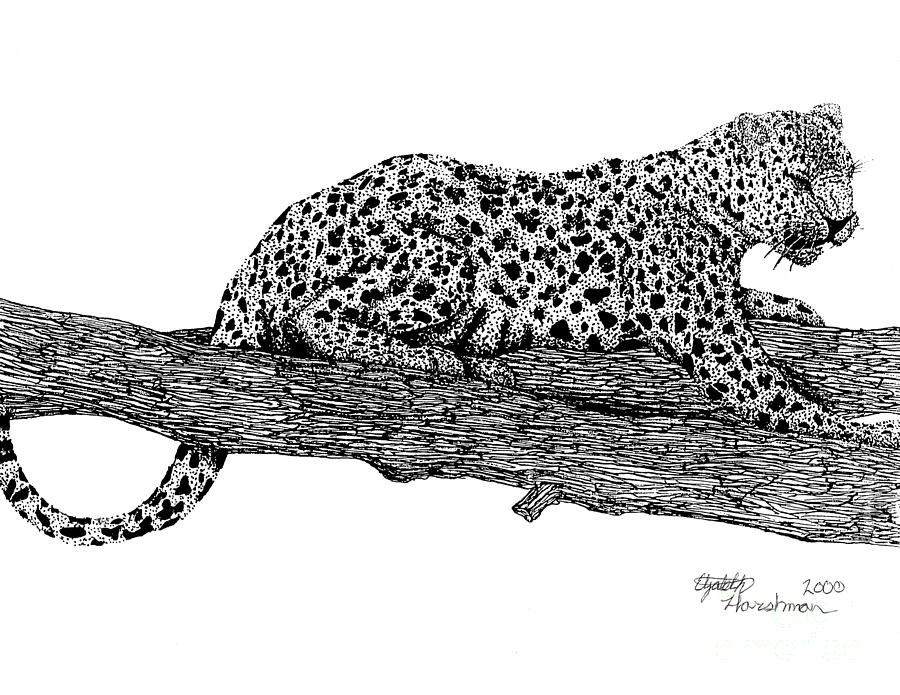 Panther Drawing - Resting Days by Elizabeth Harshman