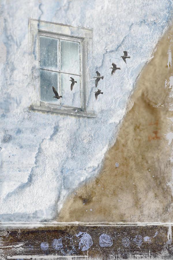 Gulls Photograph - Return Flight by Carol Leigh