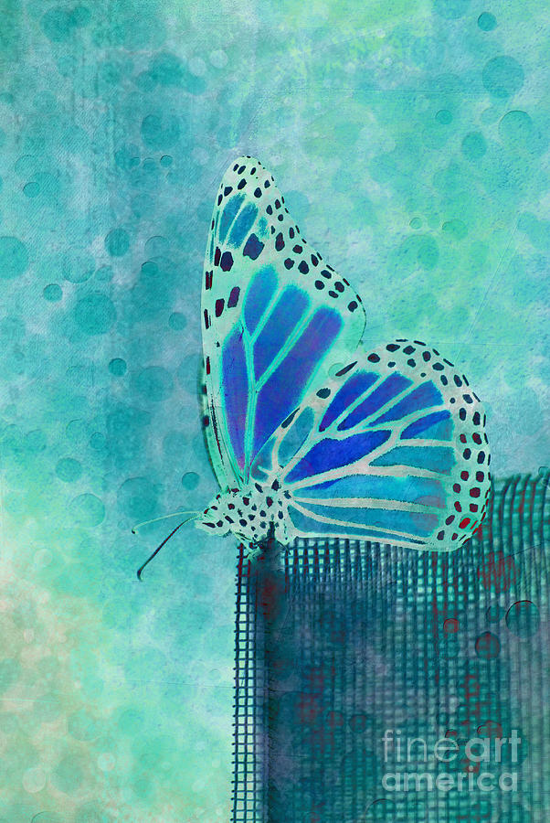 Butterfly Digital Art - Reve De Papillon - S02a2 by Variance Collections