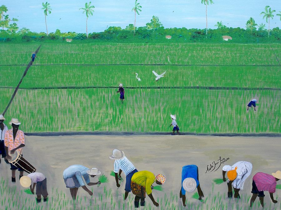 Rice Field Painting - Rice Field Haiti 1980 by Nicole Jean-Louis