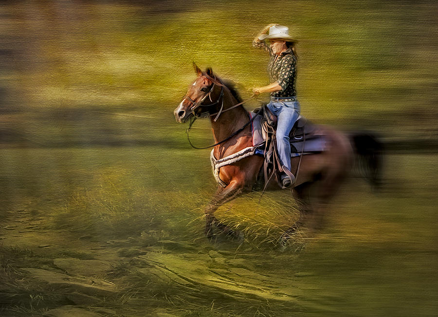 Horse Photograph - Riding Thru The Meadow by Susan Candelario