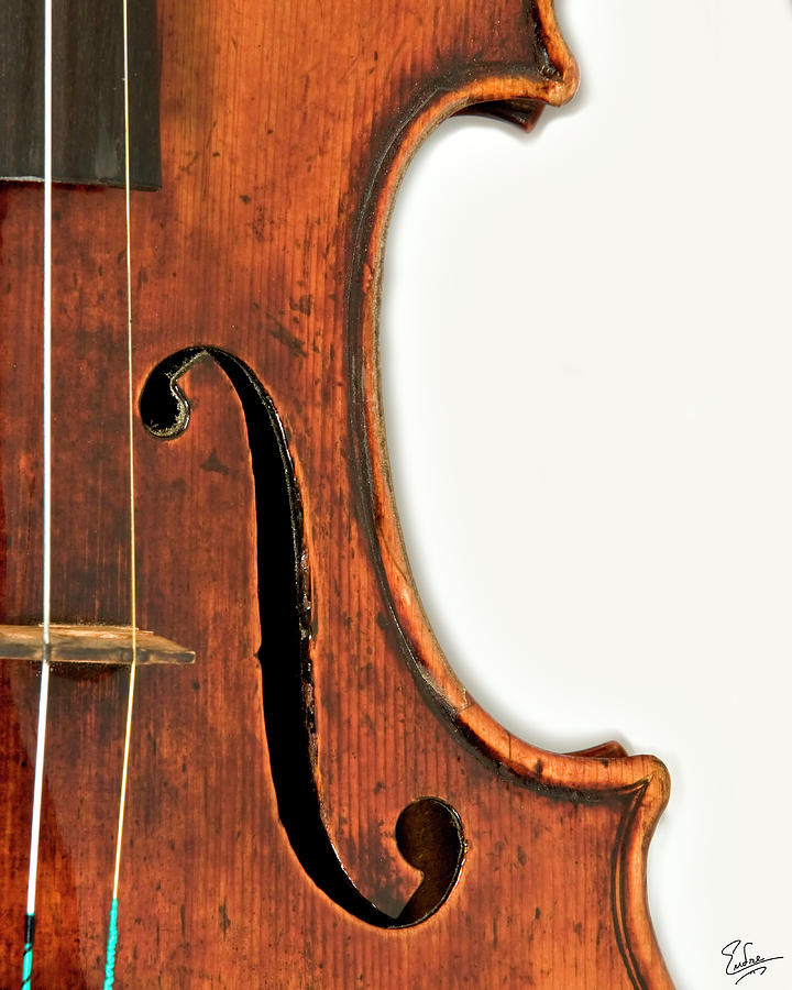 Strad Photograph - Right F by Endre Balogh