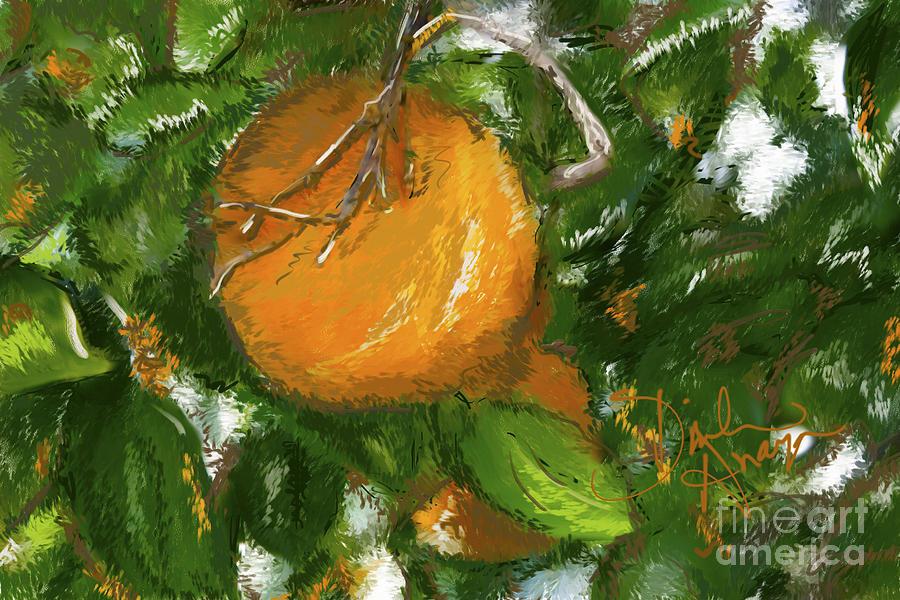 Orange Photograph - Rio Grande Valley Oranges by Dinah Anaya