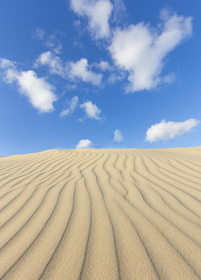 Vertical Photograph - Rippled Sand Dune And Blue Sky With Clouds by Rob Kints
