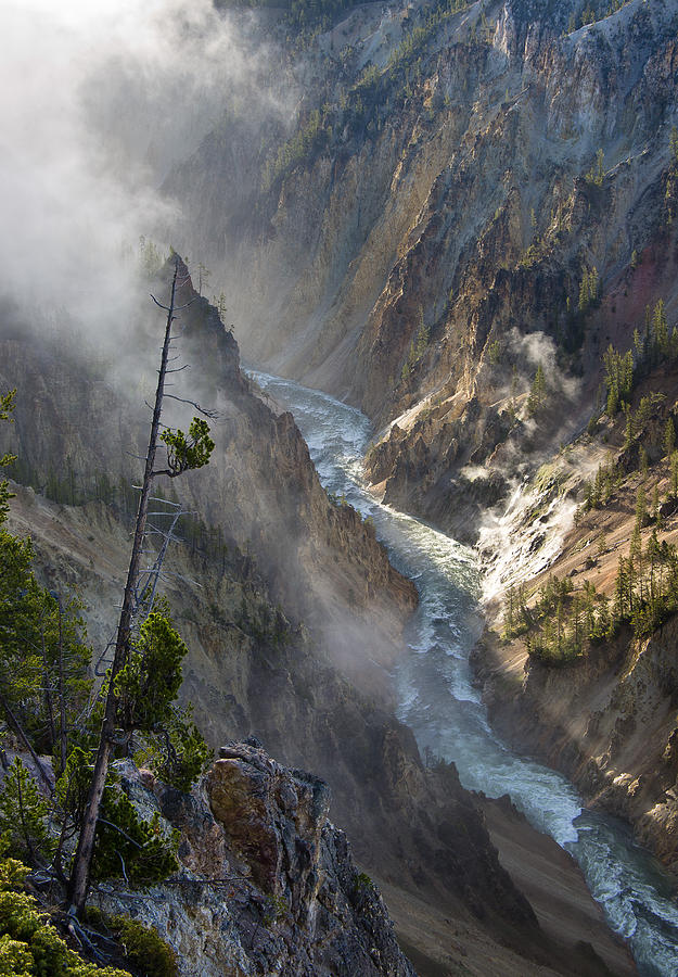 Rockies Photograph - Rising Mists From Grand Canyon Of The Yellowstone by Greg Nyquist
