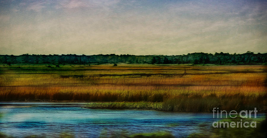 Texture Photograph - River Of Grass by Judi Bagwell