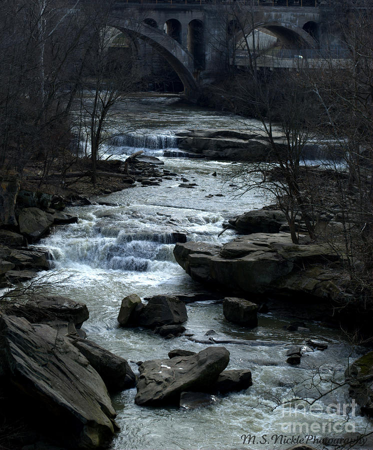 River Photograph - River Rapids by Melissa Nickle