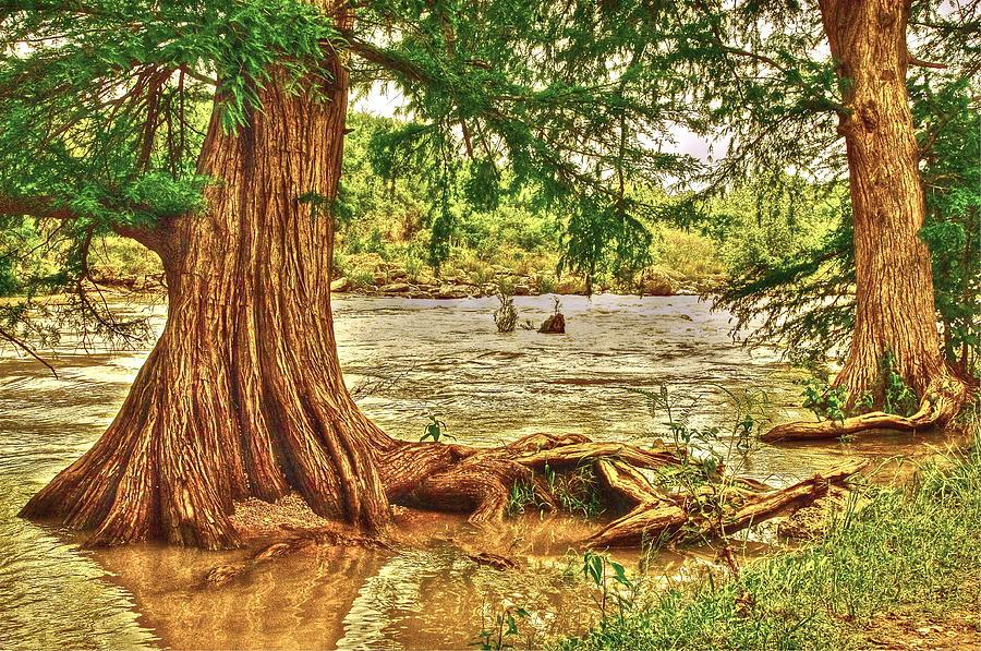 River Rise by Frank SantAgata