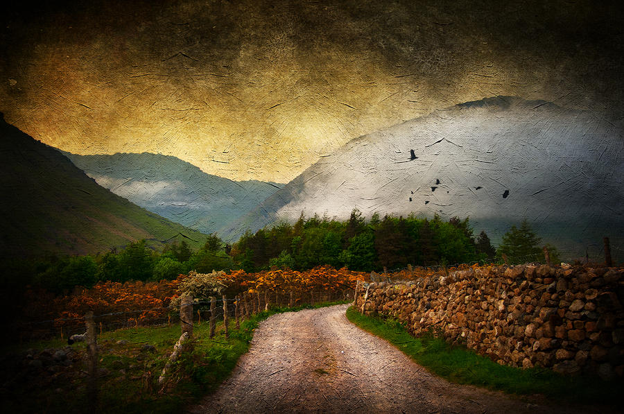 Country Digital Art - Road By The Lake by Svetlana Sewell